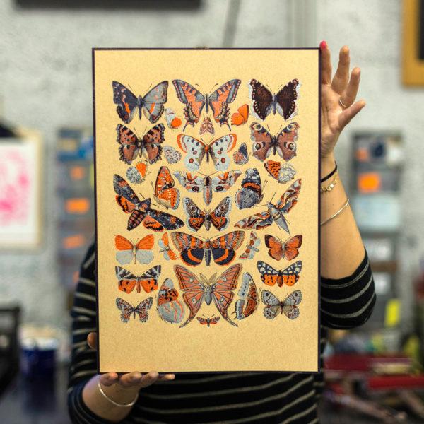 papillons - Silence des agneaux - histoire naturelle - affiche - poster - letterpress - Lyon - Super Marché noir
