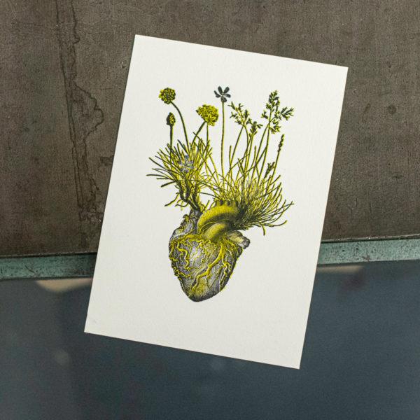 cœur champêtre - exvoto - anatomie - gravure - letterpress lyon - Super Marché Noir