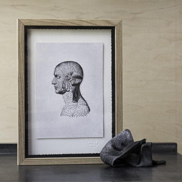 anatomie - impression artisanale - illustration scientifique - lithographie - cabinet de curiosités - - letterpress - Super Marché noir - création indépendante - créateur - conception française - création française